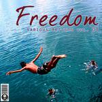 Freedom Vol 03