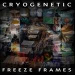 Freeze Frames