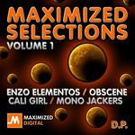 Maximized Selections: Volume 1
