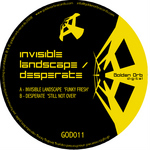 INVISIBLE LANDSCAPE/DESPERATE - GOD 011 (Back Cover)
