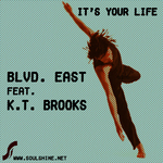 It's Your Life (Louis Benedetti mixes)