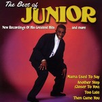 The Best Of Junior: Mama Used To Say