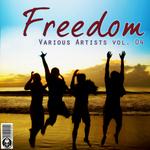 Freedom: Vol 04
