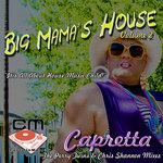 Big Mama's House Volume 2