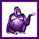 Funky Kong Remixed