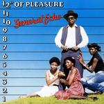 """12"""" Of Pleasure"""