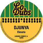 DJUNYA - Elevate (Front Cover)