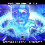 Digidelights: V 1