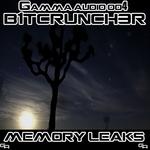 Memory Leaks EP