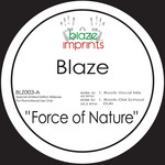 Force Of Nature (The Blaze mixes)