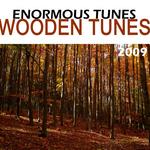 Wooden Tunes 2009