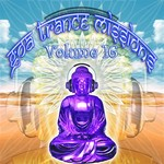 VARIOUS - Goa Trance Missions: Volume 16 (unmixed tracks) (Front Cover)
