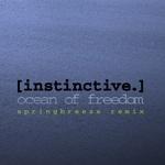 Ocean Of Freedom (Springbreeze remix)