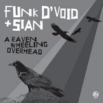 A Raven Wheeling Overhead