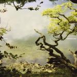 Harmonia & Eno '76 (remixes)
