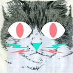 VARIOUS - Kitsch Cat (Front Cover)