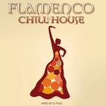Flamenco: Chill & House (unmixed tracks)