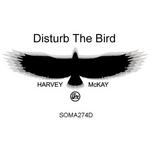 Disturb The Bird