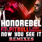 Now You See It (remixes)