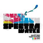 Spectra Watke