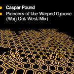 Pioneers Of The Warped Groove