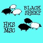 HKS MSC 15