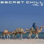 VARIOUS - Secret Chill: Vol 2 (Front Cover)