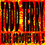 Todd Terry's Rare Grooves Vol V
