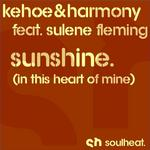 Sunshine (In This Heart Of Mine)