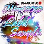 Black Hole Recordings Miami 2010 Label Sampler