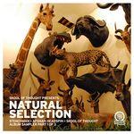 Natural Selection Album Sampler Pt 1
