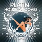 Platin House Grooves (The Vinyl mixes)