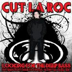 Looking For The Deep Bass