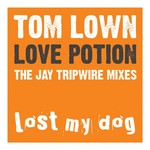 Love Potion (The Jay Tripwire Mixes)