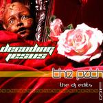The Path 3 0 (The DJ edit remixes)