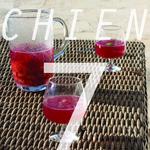 Chien 07