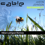 Sustainability (Hakan Ludvigson remixes)