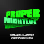 Wildfire Winds (remixes)