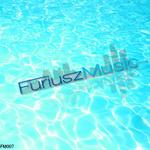 VARIOUS - Summer Of Furiusz Music 2010 (Front Cover)