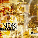 NDKJ - Fat Plus (Front Cover)