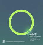 ANS - Run Like Mad EP (Front Cover)
