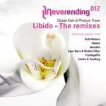 Citizen KAIN & PHUTURE TRAXX - Libido (The remixes) (Front Cover)