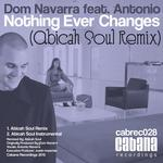 Nothing Ever Changes (Abicah Soul Remix)
