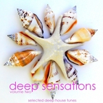 Deep Sensations Vol 2 (Selected Deep House Tunes)