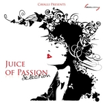Juice Of Passion Selection (unmixed tracks)