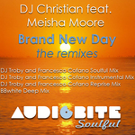 Brand New Day (the remixes)