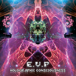 Holographic Consciousness