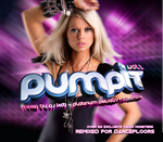 Pump It! Vol 2 (unmixed tracks & continuous DJ mixes)
