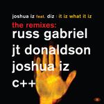 It Iz What It Iz (remixes)