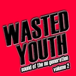 Wasted Youth: Vol 2 (Music Of The Nu Generation)